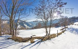 rahiv-winter